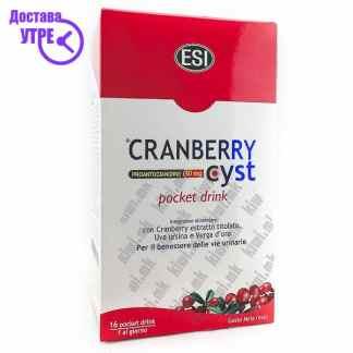 ESI Cranberry Cyst кесички, 16