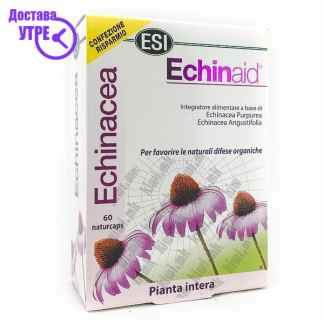 ESI Echinaid капсули, 60